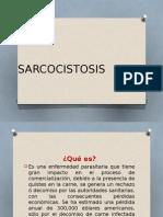 SARCOCISTOSIS