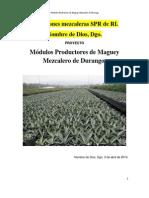 Proyecto de Modulos Productores de Maguey