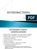 ENTEROBACTERIAS-1