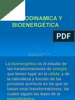 Termodinamica y Bioenergetica