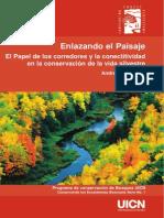 Enlazando El Paisaje