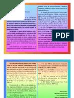 Ensayo Sobre Concepto e Historia de las RRPP