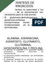 Metabolismo de Proteínas y Aminoácidos