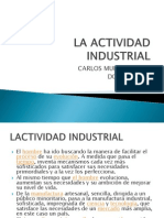 La Actividad Industrial