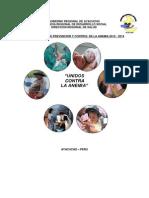 Plan de Anemia Ayacucho 2012-2014
