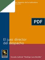 EJRLB-El Juez Director Del Despacho