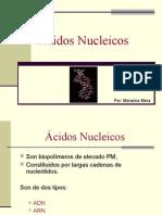 Ácidos_Nucleicos (2)
