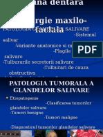 Curs an Vl Medicina Dentara Chirurgie Maxilo-faciala