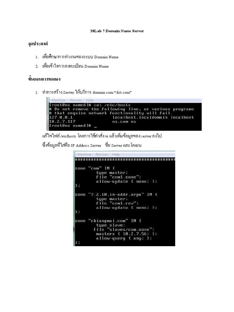 Lab 7 Domain Name Server