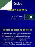 Aula Aparelho Digestório