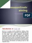 SAS BI Online Training