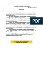 Romanul Unui Adolescent Miop de Mircea Eliade - Rezumat