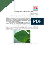 INTA - Informe Fitopatologico N22 Soja 2015
