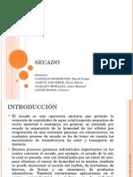 Diapositivas - Secado