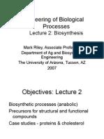 L2 Biosynthesis