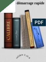 Guide de Demarrage Rapide pour - John Schember.pdf