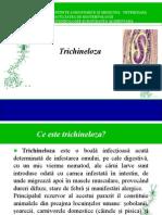 Tricineloza