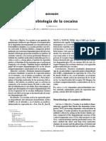 Neurobiología de la Cocaína.pdf