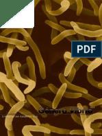 Género Vibrio