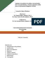 1. Sustentación Leonardo v. 18-02-2015