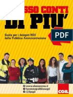 RSU 2015 Guida Per i Delegati Della PA DEF 06052015