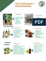 Aceites Esenciales y Aromaterapia Gigantografía