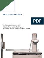 Produccion RX