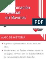 ai manual new logo 2013 spanish.pdf