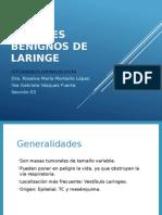 0. Tumores Benignos de Laringe