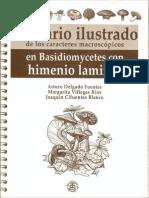 Glosario Ilustrado de Los Caracteres Macroscópicos