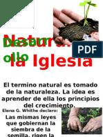 Desarrollo Natural de la Iglesia.pptx