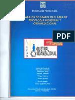 Libro Psicologia Industrial y Organizacional