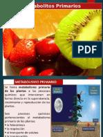 Metabolitos Primarios PARCIAL 2