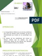 La Inseguridad en Mexico
