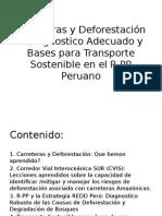 Carreteras-y-Deforestación-D1.pptx