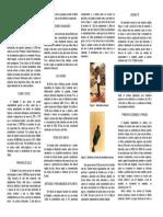 Gergelim_recomendacoes_tecnicas.pdf