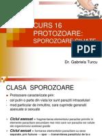 curs_16 (1) virusologie cadre mediii