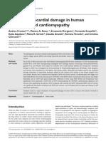 Oxidative Myocardial Damage in Human