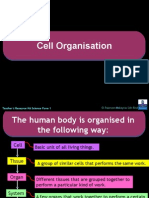 Cell Organisation.pps