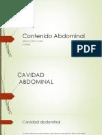 Contenido Abdominal