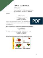 Tema 1,2 Gramatica Inglesa 1º ESO