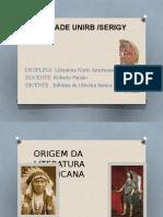 ORIGEM DA LITERATURA NORTE AMERICANA