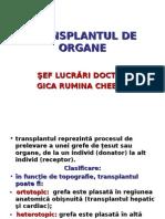 Transplant Ul