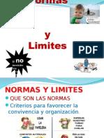 Presentacion Normas y Limites