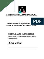 Determinacion Judicial de La Pena y Medidas Alternativas Amag 2012