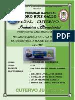 PROYECTO .. ELABORACION DE BARRA ENERGETICA A BAS DE OCA CON LECHE.pdf