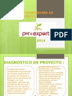 Presentacion de proyecto pro export
