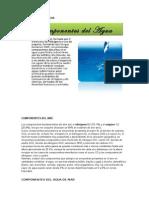COMPONENTES-DEL-AGUA.docx