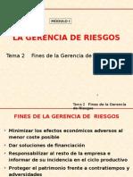 02 Tema 2 Fines Gerencia