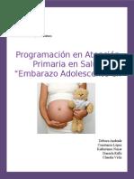 Programación en atención primaria en salud